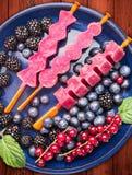 在蓝色碗的自创葡萄冰棍儿冰淇凌冰糕用夏天莓果:红浆果,黑莓,在红色woode的蓝莓 免版税库存图片