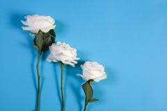 在蓝色背景的三朵白玫瑰与笔记的空的空间 看板卡例证浪漫向量 库存照片