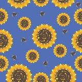 在蓝色背景的向日葵 无缝的模式 免版税库存照片