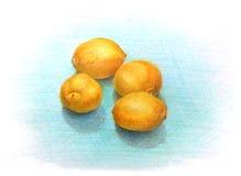 在蓝色背景的四个小黄色柠檬手拉在色的铅笔 免版税库存照片