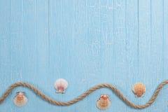 在蓝色背景的壳绳索 免版税库存图片