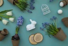 在蓝色背景的复活节装饰构成 白色郁金香、花盆、没有漆的鸡蛋和树 免版税库存照片