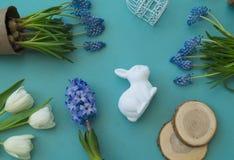 在蓝色背景的复活节装饰构成 白色郁金香、花盆、没有漆的鸡蛋和树 库存图片