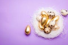 在蓝色背景的复活节金黄鸡蛋 库存照片
