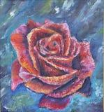 在蓝色背景的大红色玫瑰 免版税库存图片