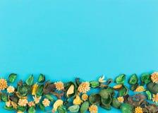 在蓝色背景的干燥花构成和叶子作为与拷贝空间的框架 顶视图,平的位置 库存照片