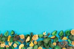 在蓝色背景的干燥花构成和叶子作为与拷贝空间的框架 顶视图,平的位置 免版税库存图片
