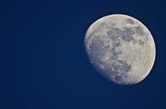 在蓝色背景的月亮 库存图片