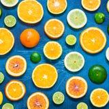 在蓝色背景的柑橘样式 被分类的柑橘水果 切片桔子,蜜桔,柠檬,石灰 顶视图 正方形 图库摄影