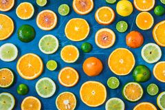 在蓝色背景的柑橘样式 被分类的柑橘水果 切片桔子,蜜桔,柠檬,石灰 顶视图 库存图片