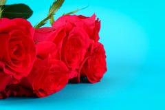 在蓝色背景的桃红色玫瑰,在淡色纸 复制文本的空间 模板母亲节3月8日, 免版税图库摄影