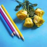 在蓝色背景的桃红色郁金香花的布置 免版税库存图片