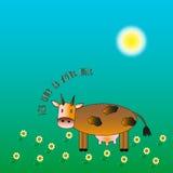 在蓝色背景的母牛 免版税库存图片