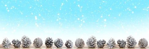 在蓝色背景的白色pinecones与雪花 库存图片
