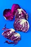 在蓝色背景的红叶卷心菜。 库存照片