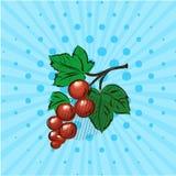 在蓝色背景的红浆果,线,小点 也corel凹道例证向量 手拉在样式流行艺术 免版税库存图片