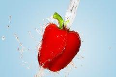 在蓝色背景的红辣椒飞溅 免版税库存图片