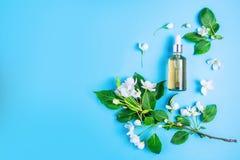 在蓝色背景的自然有机化妆用品在花框架,开花的苹果树 免版税库存照片