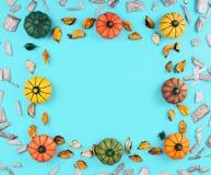 在蓝色背景的装饰南瓜 库存图片