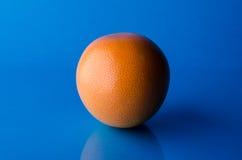 在蓝色背景的整个葡萄柚,水平的射击 免版税库存照片