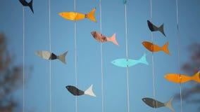 在蓝色背景的翻板鱼 股票录像