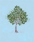 在蓝色背景的年轻树 库存例证
