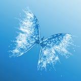 在蓝色背景的水蝴蝶 库存照片