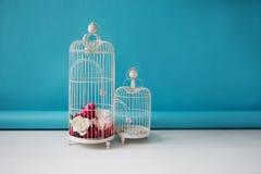 在蓝色背景,花卉装饰的两个美丽的空的鸟笼 免版税库存照片
