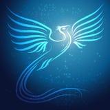在蓝色背景w的光亮的抽象菲尼斯鸟 免版税库存图片