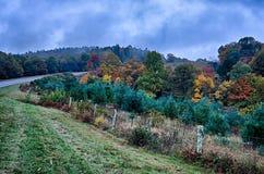 在蓝色背脊山的秋天颜色 库存照片