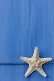在蓝色色的木背景的海星 免版税库存图片