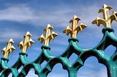 在蓝色铁栏杆的金尾花 免版税库存图片