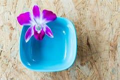 在蓝色陶瓷的紫色兰花在木头 免版税图库摄影