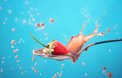 在蓝色隔绝的牛奶的草莓飞溅 免版税库存照片
