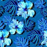 在蓝色颜色的无缝的tropicana传染媒介 库存照片