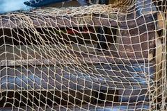 在蓝色,灰色木背景的捕鱼网 库存照片