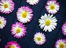 在蓝色织品与样式,自然背景,墙纸的花 图库摄影