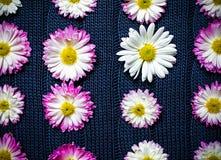 在蓝色织品与样式,自然背景,墙纸的花 免版税库存照片