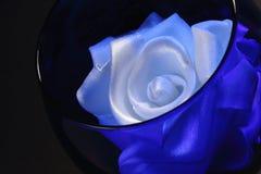 在一块蓝色玻璃的白色玫瑰 免版税库存照片