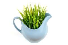 在蓝色水罐的绿草 在瓶子的草 背景查出的白色 免版税图库摄影
