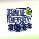 在蓝莓题材的传染媒介例证  免版税库存照片