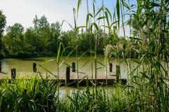 在蔓延的河沿的木码头在晴朗的夏天下午 库存图片
