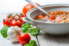在蕃茄汤的特写镜头做ââof大蒜和蓬蒿 库存照片