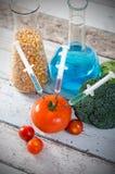 在蕃茄的注射器 基因上在木背景的修改过的食物概念 库存照片