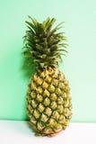 在薄荷的绿色背景的被隔绝的黄色菠萝 免版税图库摄影