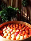 在薄菏和荷兰芹背景的成熟杏子预期吃 库存照片