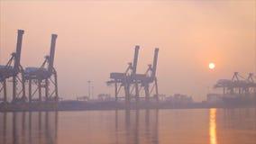 在薄雾中的Khlong Toei口岸早晨 股票视频