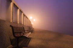 在薄雾的一条长凳 免版税库存照片