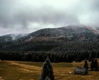 在薄雾的山风景 库存照片