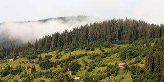 在薄雾的山 免版税图库摄影